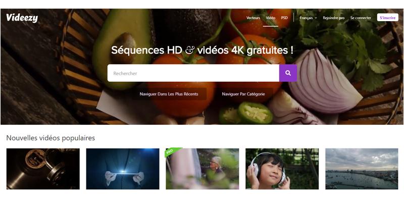 Free stock footage video Videezy